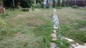 DIY lawn 7-18-2013