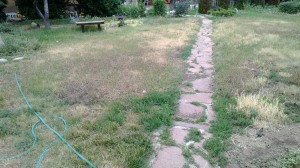 Dry Lawn 6-30-13